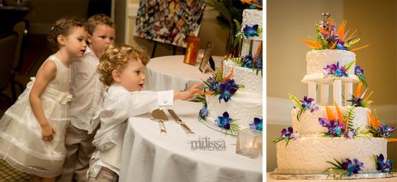 WeddingSanibelPhotographer