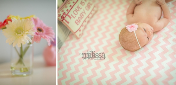 Sanibel_Captiva_Newborn_Maternity_Photography1
