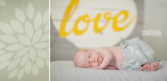 Newborn_Photography_Fort_Myers